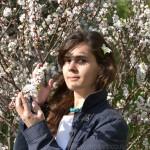 архитектор Ольга Николаевна Алёшина. Портрет в цветущей вишне