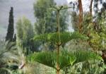 «Дождь у моря Галилейского». Тверия. Вид из русского монастыря во имя святой равноапостольной Марии Магдалины.