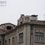Школа при Морозовской фабрике в Ногинске
